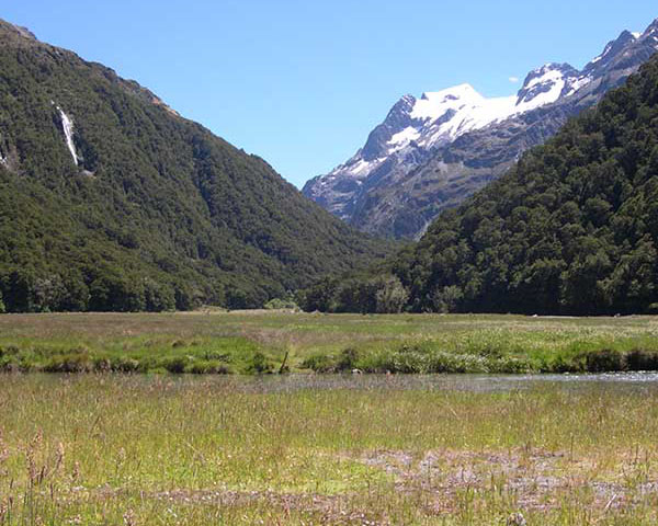 Routeburn Guided Walk Half Day