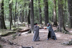 lotr-Glenorchy-Paradise-Beech-Forest