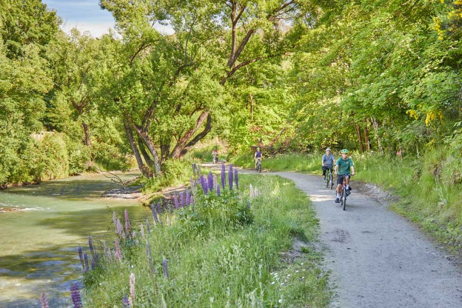 aorrowriver--queenstown-bike wine tour