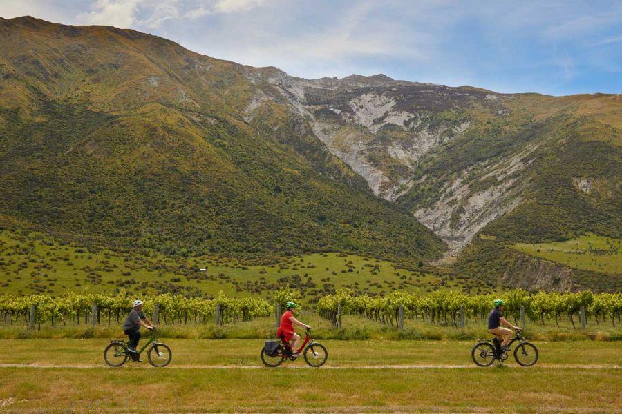 wineries-queenstown-bike-wine tour