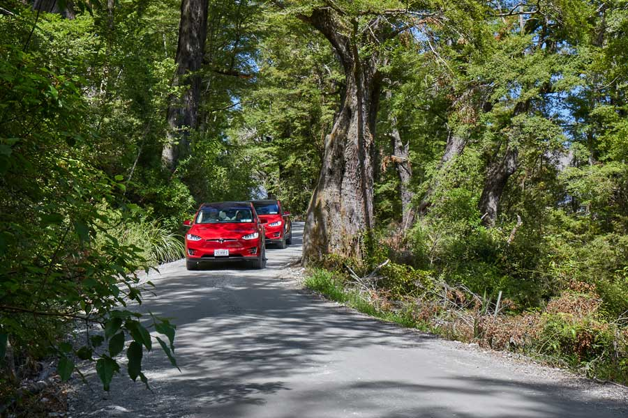 Queenstown Tesla Private Tours